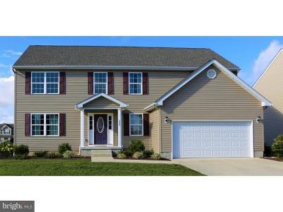 Single Family Home For Sale: 266 S Marshview Terrace