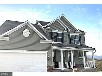 Warren County Single Family Home For Sale: 90 Albatross Court