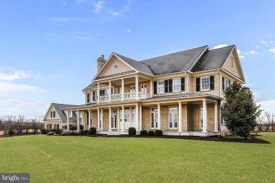 Loudoun County Single Family Home For Sale: 42779 Travelers Run Lane