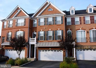 Ashburn Rental For Rent: 42889 Edgegrove Heights Terrace