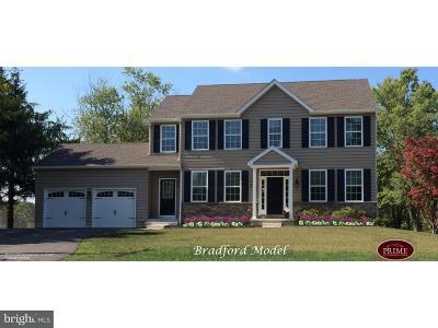 Bucks County Single Family Home For Sale: 7519 Easton Road