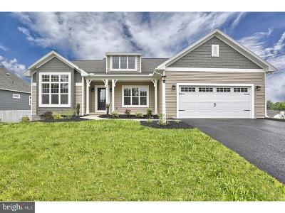 Single Family Home For Sale: 282 Copper Beech Lane