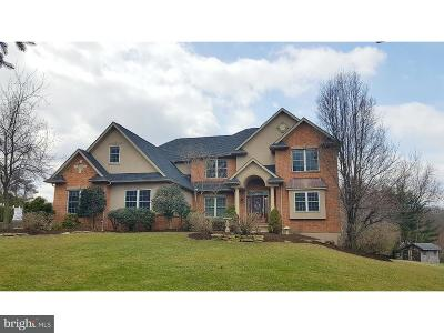 Single Family Home For Sale: 209 Hillview Circle