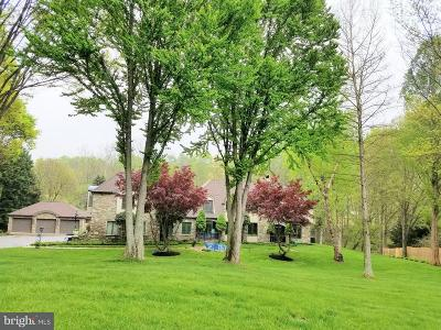 Owings Mills Single Family Home For Sale: 7 Liberty Ridge Court