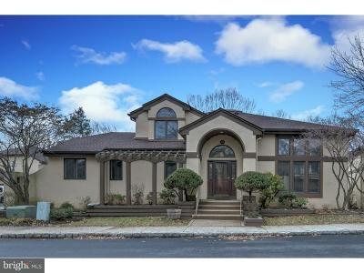 Princeton Landing Single Family Home For Sale: 291 Sayre Drive