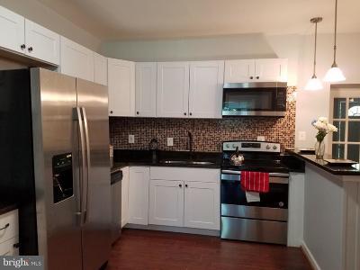 Baltimore Single Family Home For Sale: 1440 Maple Avenue
