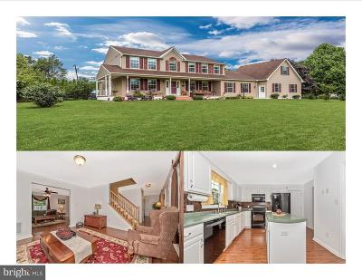 Mount Airy Single Family Home For Sale: 13842 Penn Shop Road