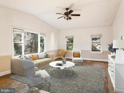 Vienna Single Family Home For Sale: 208 Oak Street SW