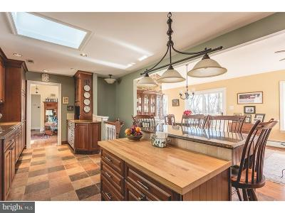 New Hope Single Family Home For Sale: 36 Solebury Mountain Road