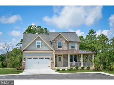 Gilbertsville Single Family Home For Sale: 2061 Melrose Drive