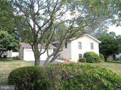Single Family Home For Sale: 480 Little Egypt Road