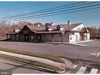 Smyrna Commercial For Sale: 5838 Dupont Parkway