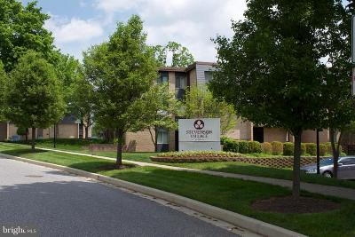 Pikesville Condo For Sale: 13 Stonehenge Circle #13-T
