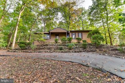 Owings Mills Single Family Home For Sale: 3517 Gwynnbrook Avenue