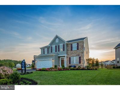 Downingtown Single Family Home For Sale: 1030 Florence Court