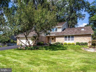 Gaithersburg Single Family Home For Sale: 11613 Flints Grove Lane