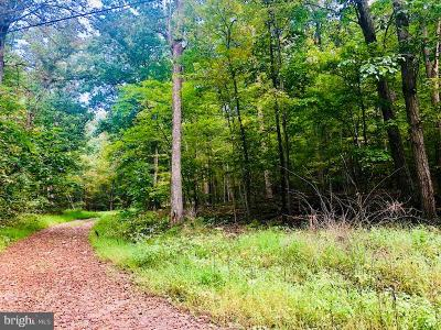 Clarke County, Harrisonburg City, Page County, Rockingham County, Shenandoah County, Warren County, Winchester City Residential Lots & Land For Sale: Anamarie Ln