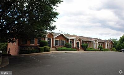 Fairfax Condo For Sale: 10195 Main Street #L