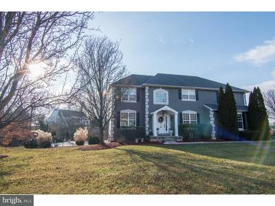 Royersford Single Family Home For Sale: 318 Country Ridge Drive