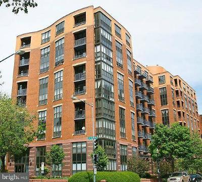 Shaw Rental For Rent: 1001 L Street NW #309