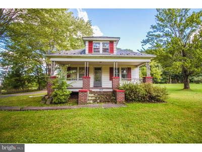 Bucks County Single Family Home For Sale: 1679 Chestnut Ridge Road