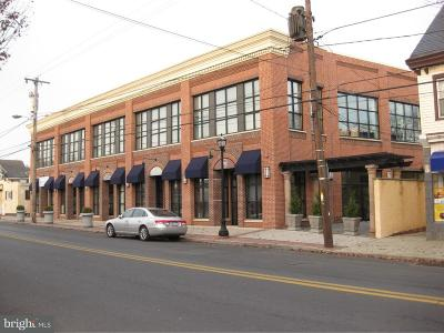 Bucks County Commercial For Sale: 60 E Bridge Street