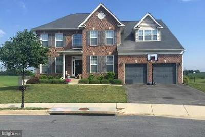 Boonsboro Single Family Home For Sale: 16 Holder Court