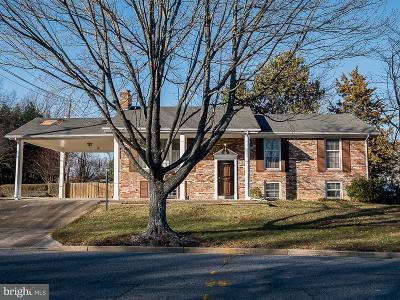Upper Marlboro Single Family Home For Sale: 12000 Marlton Avenue