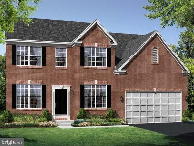 Woodbridge Single Family Home For Sale: 3490 Shandor Road