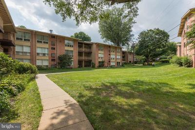 Annandale, Falls Church Condo For Sale: 7344 Lee Highway #204