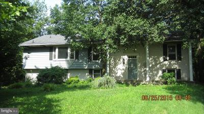Baltimore County Rental For Rent: 3910 Washington Street #2B