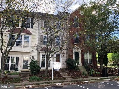 Centreville Rental For Rent: 6849 Stone Maple Terrace