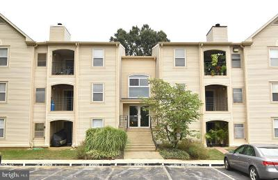 Annapolis Condo For Sale: 20 Hearthstone Court #C