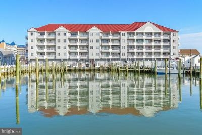 Ocean City Condo For Sale: 205 Somerset Street #B111