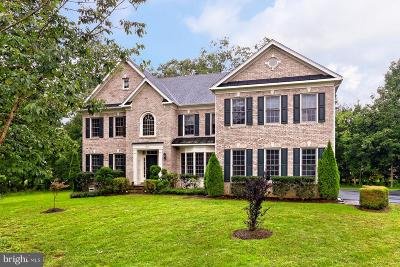 Centreville Single Family Home For Sale: 5841 Saddle Downs Place