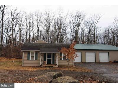Bucks County Single Family Home For Sale: 35 Kintner Hill Road