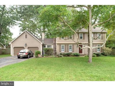 Millville Single Family Home For Sale: 706 Mallard Street
