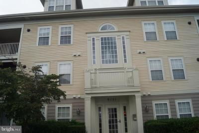 Howard County Condo For Sale: 9121 Gracious End Court #301
