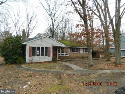 Tabernacle Twp Single Family Home For Sale: 206 Oakshade Road