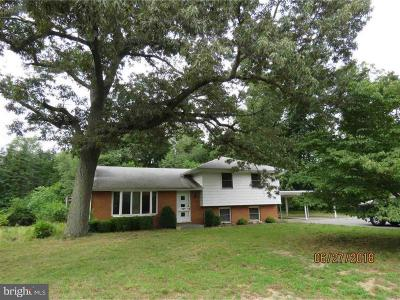 Vineland Single Family Home For Sale: 1480 W Wheat Road