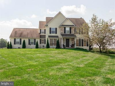 Oxford Single Family Home For Sale: 325 Mill Pond Lane