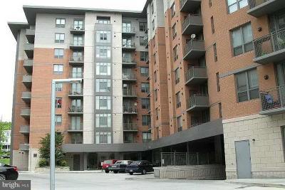Washington Single Family Home For Sale: 3883 Connecticut Avenue NW #P-100