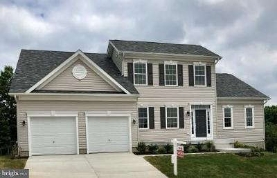 Hanover Single Family Home For Sale: 7505 Ridge Retreat Place