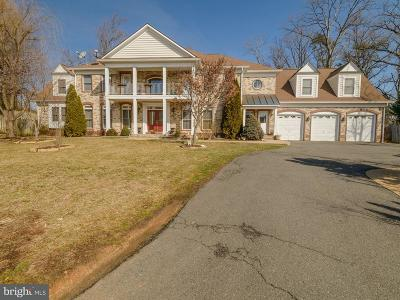 Annandale Single Family Home For Sale: 6438 Columbia Pike