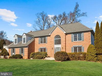 Ellicott City Single Family Home For Sale: 3763 Chateau Ridge Drive