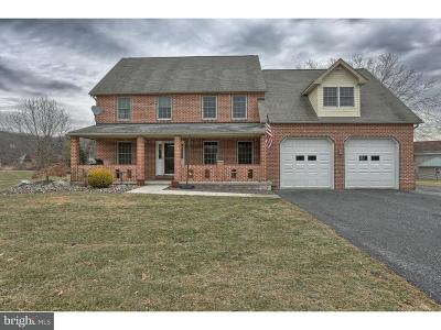 Sinking Spring Single Family Home For Sale: 2051 Old Lancaster Pike