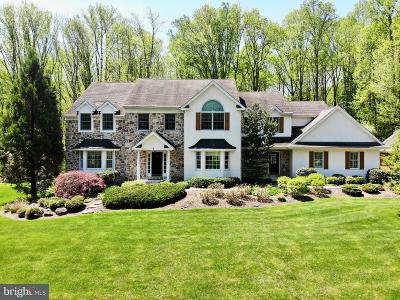 Downingtown Single Family Home For Sale: 44 Delaney Drive