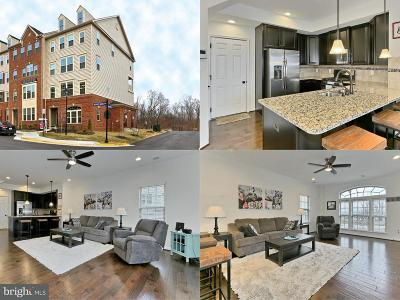 Aldie Townhouse For Sale: 26052 Braided Mane Terrace
