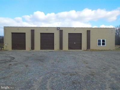 Newfield Commercial For Sale: 870 Harding Highway