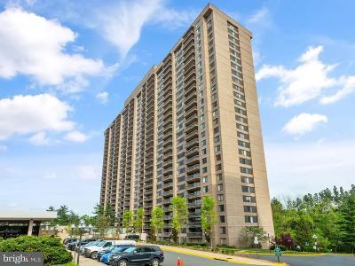 Falls Church Single Family Home For Sale: 3705 S George Mason Drive #517S